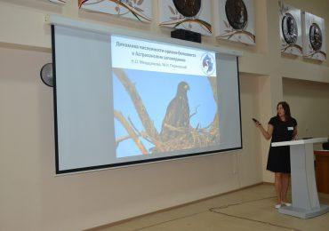Международная конференция по хищным птицам Северной Евразии