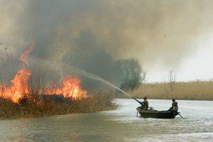 Пожар на Обжоровском участке 2012 года Фото Кашин А А