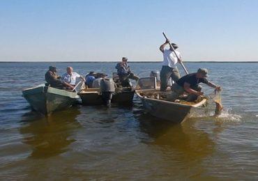 В Астраханском заповеднике задержаны браконьеры