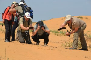 Туристы фотографируют пустынных обитателей