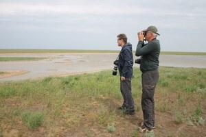 Наблюдение за птицами у водоёма
