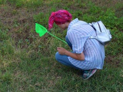 Выискивать насекомых нелегко