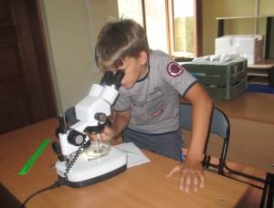Работа в ихтиологической лаборатории