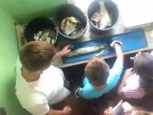 обработка улова