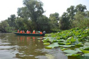 Экскурсия по водным маршрутам - учёты птиц и знакомство с заповедной природой