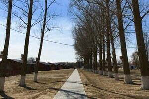 Новая дорожка на территории Дамчикского участка заповедника