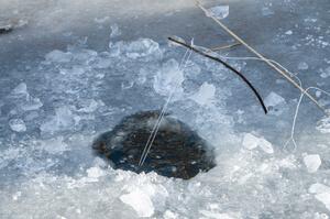 Незаконный лов рыбы на территории заповедника доказан