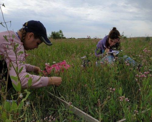 Изучение растительных сообществ