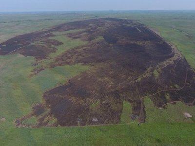 Площадь, повреждённая пожаром составила 383 га тростниковой ассоциации.