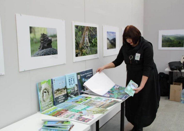 Подготовка раскладки буклетов, книг, сувениров на фестивале